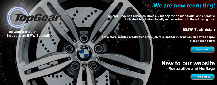 BMW sussex servicing
